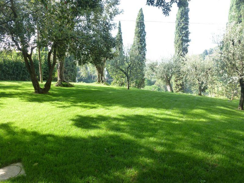 Prato seminato by Oasi del Verde | Pisa